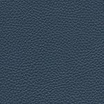 N.C. OCEAN BLUE