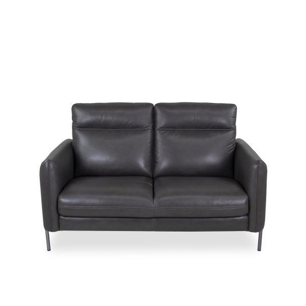 Quinn Loveseat in Charcoal Leather, Straight