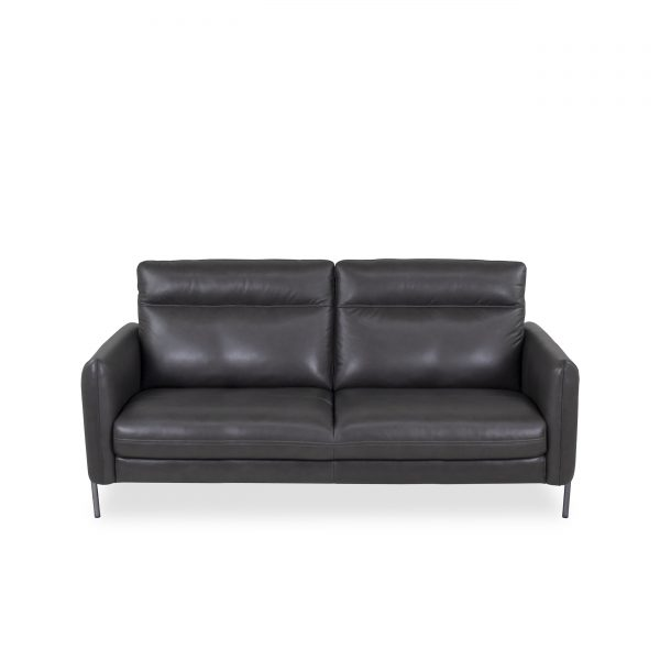 Quinn Sofa in Charcoal Leather, Straight